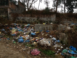 In Nepal, garbage is the gift that keeps on giving. Trashed plastic bags are everywhere. © Donatella Lorch