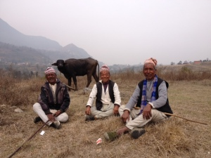 Buffalo herders resting in the fields © Donatella Lorch
