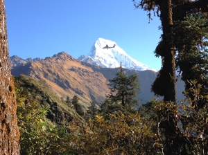 The flight Pokhara-Jomson offers stunning views and is very close to the mountain tops. ©Donatella Lorch