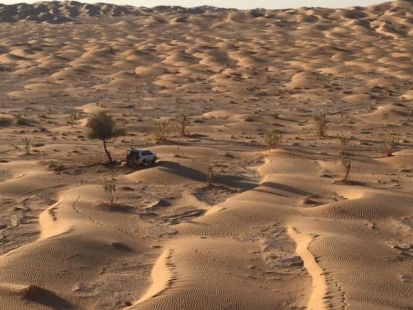 Our campground and car in the Rub' al Khali. ©Donatella Lorch